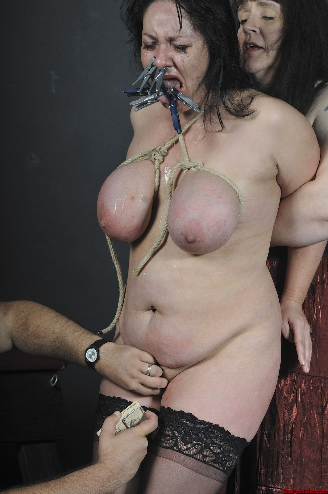 image Slave slut whipped and tormented in hard position